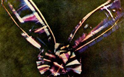 ¿Sabías cuál fue la primera fotografía a color?